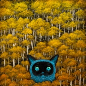 Eyes Of The Wild Wonder by Andy Kehoe