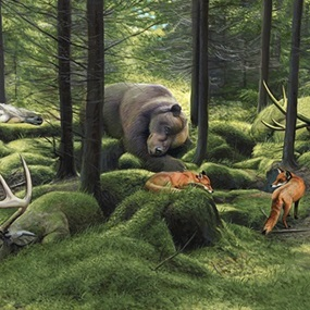 The Sleeping Woods by Josh Keyes