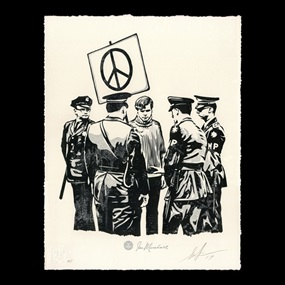 Peaceful Protester by Shepard Fairey