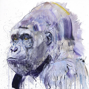 Silverback VII by Dave White