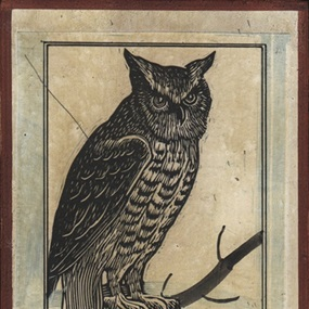 Perched by Ravi Zupa