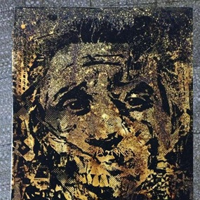 Morphed (First Edition) by Vhils