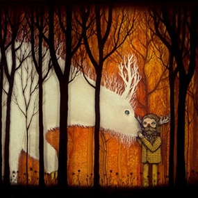 Companion by Andy Kehoe
