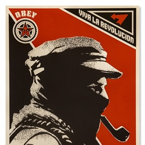 Marcos Profile by Shepard Fairey