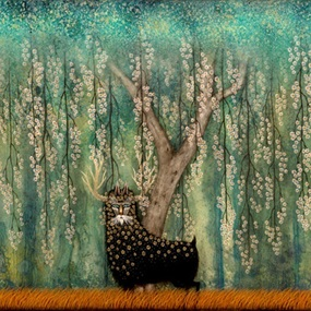 A Flowering Fascination by Andy Kehoe