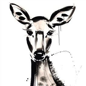 Doe by Jenna Snyder-Phillips