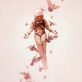 Wilderness (Timed Edition) by Jeremy Geddes