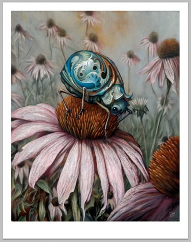 Echinacea  by Esao Andrews