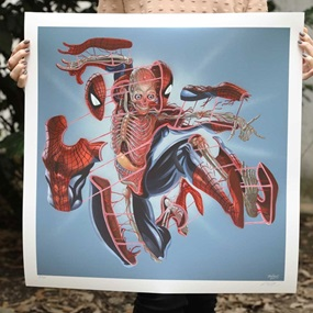 Dissection Of Spiderman (First Edition) by Nychos