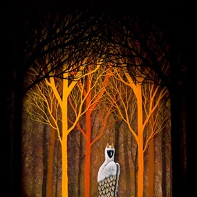 Forest Of Illumination by Andy Kehoe